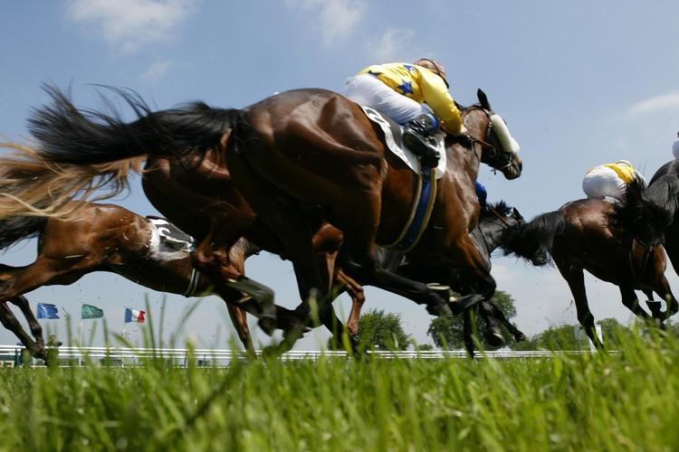 Quinté+ : «saucissonnez» votre sélection de 12 chevaux pour toucher le jackpot !